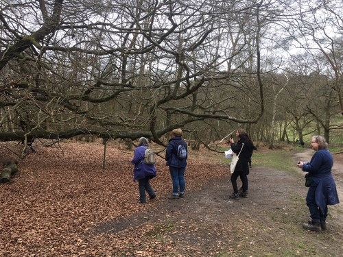 Surrey Unearthed Poetry Walk